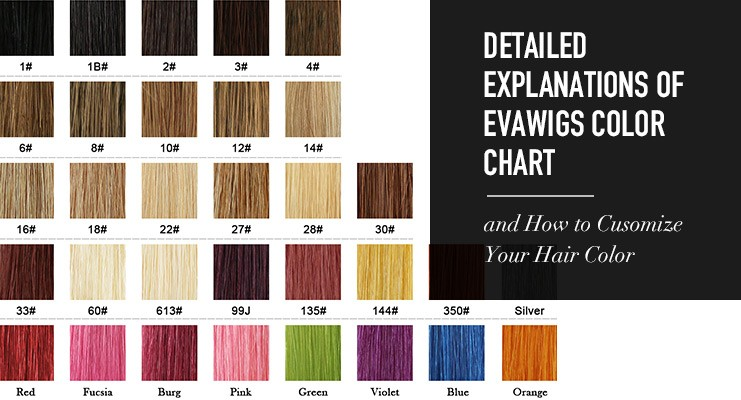 Detailed Explanations of EvaWigs Color Chart And How to Customize Your Hair Color